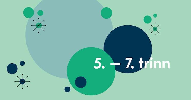 5 7 Trinn