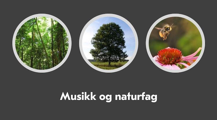 Eventyrskogen Musikk Og Naturfag